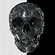 Old Metal Skull - VideoHive Item for Sale