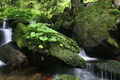 Boulders and flowing water - PhotoDune Item for Sale