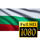 Bulgaria Flag - VideoHive Item for Sale