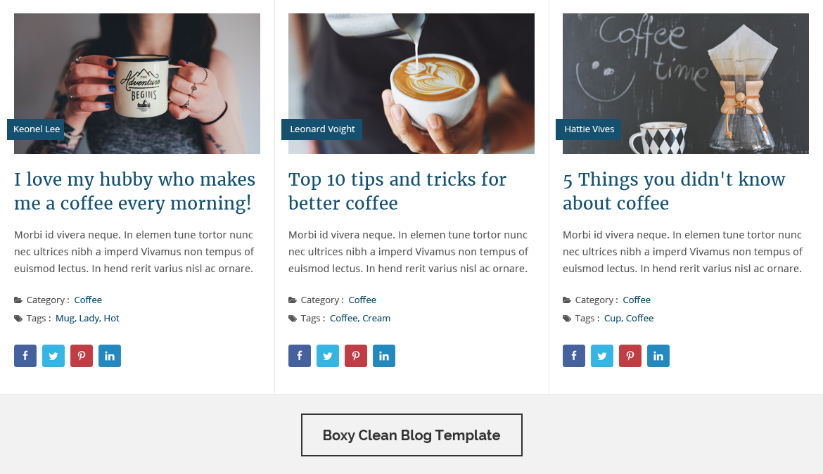 Blog designer pro for wordpress by solwin codecanyon for Pro photo blog templates