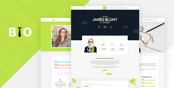 Resume, CV, Freelancer WordPress Theme