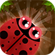 Bugs Adventure + Admob (Android Studio + Eclipse) Easy Reskin