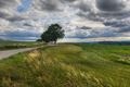 Rural landscape with dramatic sky - PhotoDune Item for Sale
