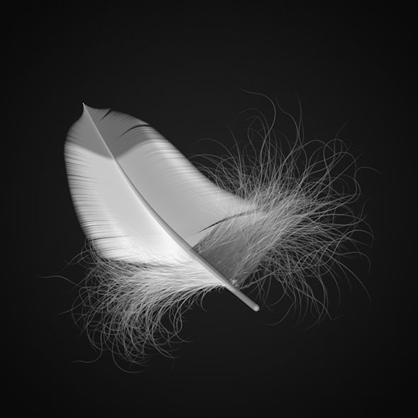 3DOcean Feather 3D model 20567667