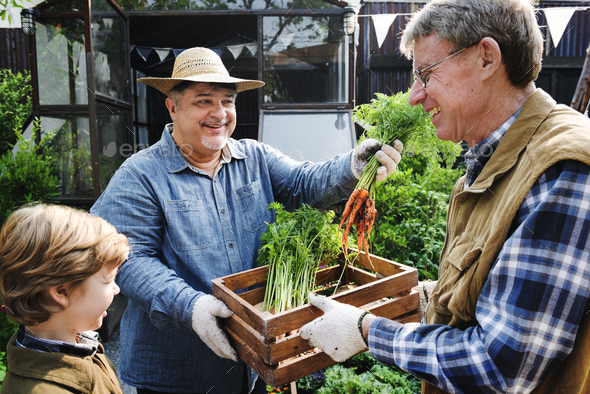 Adult Farmer Man Offering Fresh Carrot - Stock Photo - Images