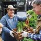 Adult Farmer Man Offering Fresh Carrot - PhotoDune Item for Sale