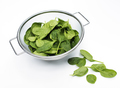 Closeup of fresh organic spinach leaves isolated on white
