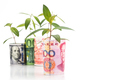 Concept of green plant grow on currency with China Yuan Renminbi