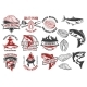 Salmon Meat Labels and Badges. Seafood Grill. Fish
