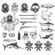 Big Set of Diving Icons. Diver Equipment, Weapon