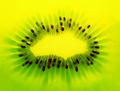 kiwi background - PhotoDune Item for Sale