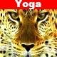 Yoga Pack