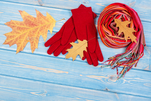 Autumnal leaves, womanly woolen gloves and shawl, clothing for autumn or winter - Stock Photo - Images
