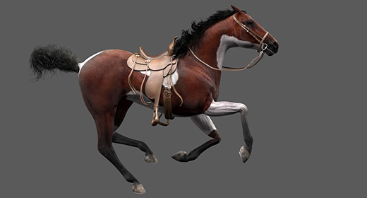 Pinto Horse Animations