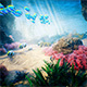 Ocean Life - VideoHive Item for Sale