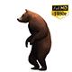 3D Bear 4