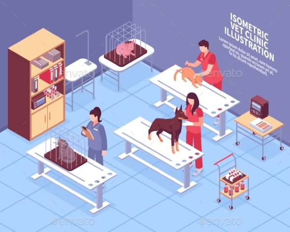 Isometric Veterinary Composition - Health/Medicine Conceptual
