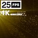 Digital Networks 02 4K