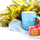Cup of tea and cookies - PhotoDune Item for Sale