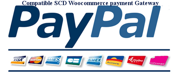 CodeCanyon SPG Smart Payment Gateway for Paypal 20584916