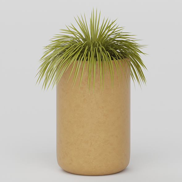 3DOcean Vray Ready Potted Plant 20585771