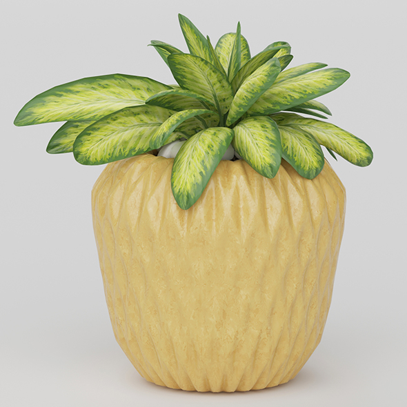 3DOcean Vray Ready Potted Plant 20585790