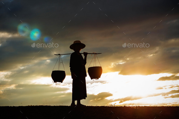 farmer on a field at sunset - Stock Photo - Images