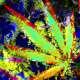 Marijuana Grunge Background 003