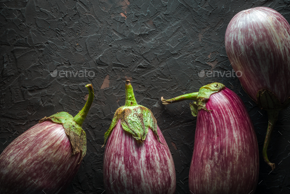 Eggplant in stripes on a dark gray background - Stock Photo - Images