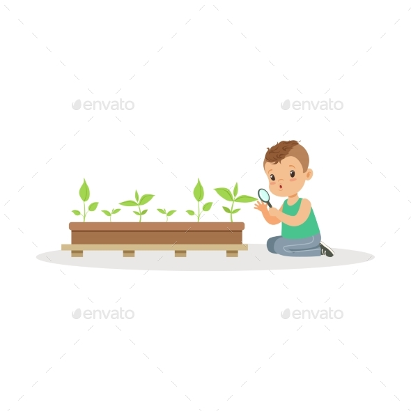 GraphicRiver Boy Examining Plants 20590045