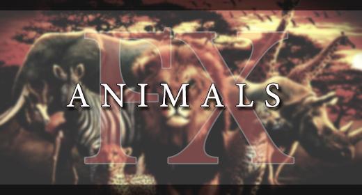 ANIMALS FX
