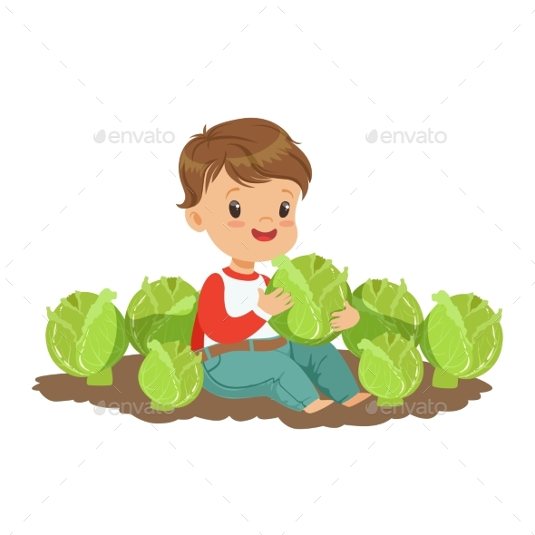 Boy Playing with Cabbage in the Garden - Food Objects
