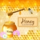 Colorful Honey Illustration