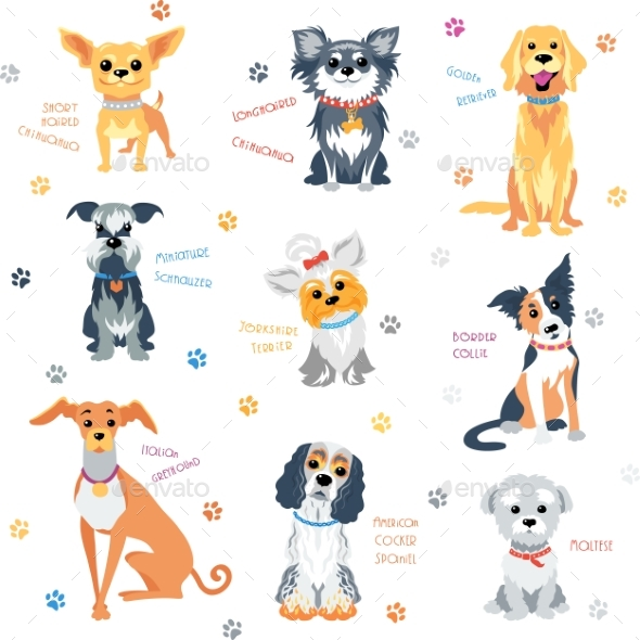 Set Colour Dogs - Animals Characters
