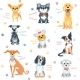 Set Colour Dogs - GraphicRiver Item for Sale
