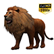 3D Lion Animation 8