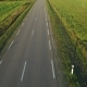 Flying Above Road in Fields - VideoHive Item for Sale