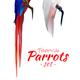 Tropical Parrots Realistic Set