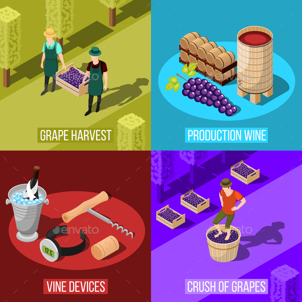 Wine Isometric Design Concept - Food Objects