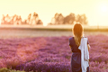Young woman relaxing looking on lavender field at sunset - PhotoDune Item for Sale