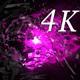 Inside Light 4K 03