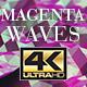 Magenta Waves Background