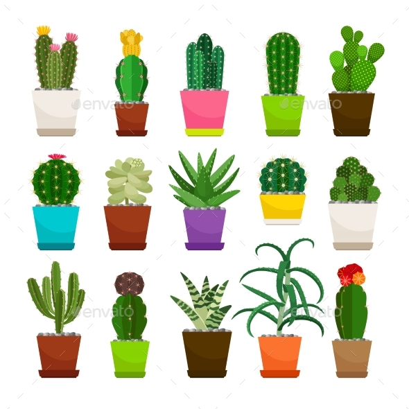 GraphicRiver Cactus Houseplants in Flower Pots Set 20599234