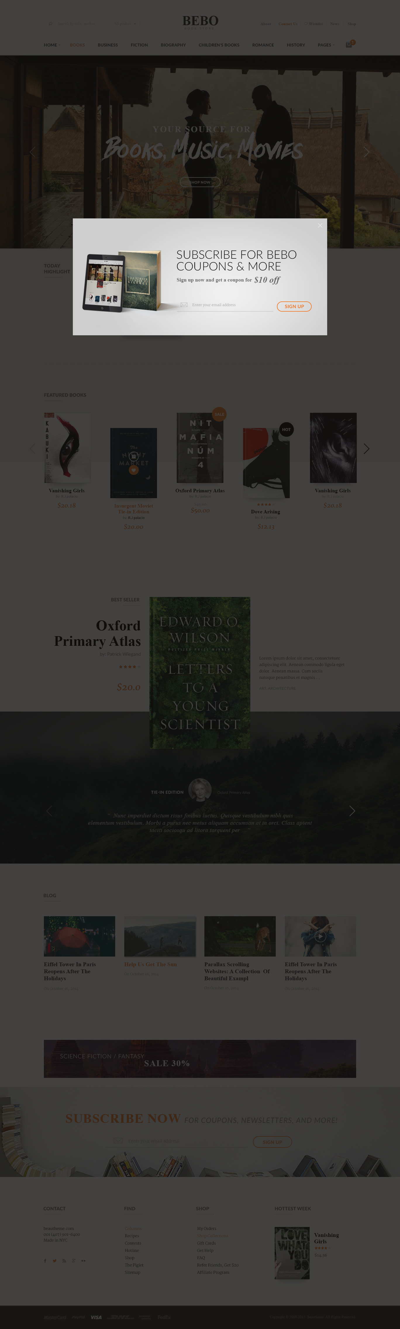 Bebo book issue cddvd store publish library wp by beautheme review01screenshotg fandeluxe Choice Image