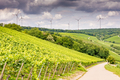 Growing wine and windpower in Franconia - PhotoDune Item for Sale