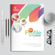 The Company Profile - GraphicRiver Item for Sale