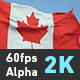 Flag Canada - VideoHive Item for Sale
