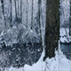 River Through the Woods in Snowfall