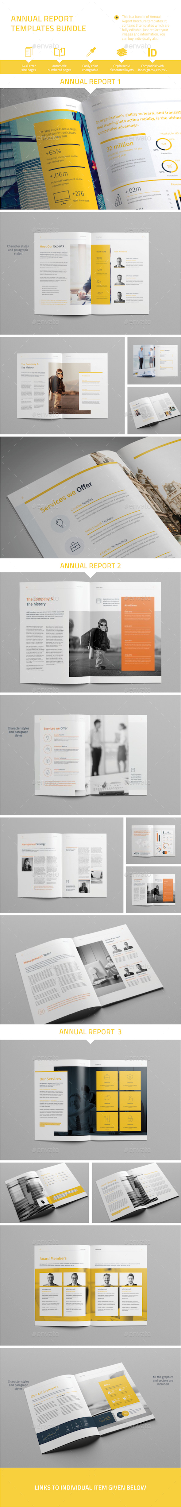 Annual Report Template Bundle - Informational Brochures