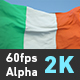 Flag Ireland - VideoHive Item for Sale